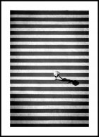 Crossing Stripes Poster