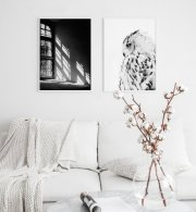 Gallery wall with white frames and black and white photo art