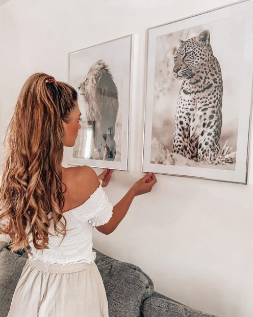Beautiful animal posters lion leopard prints silver frames