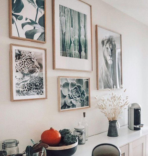 Beautiful nature posters and animal prints in oaken frames