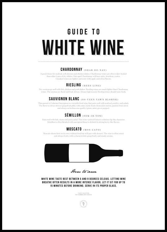 Guide to White Wine Poster